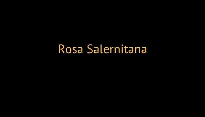 rosa salernitana